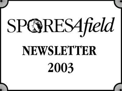 SporesAfield Newsletter | March 2003