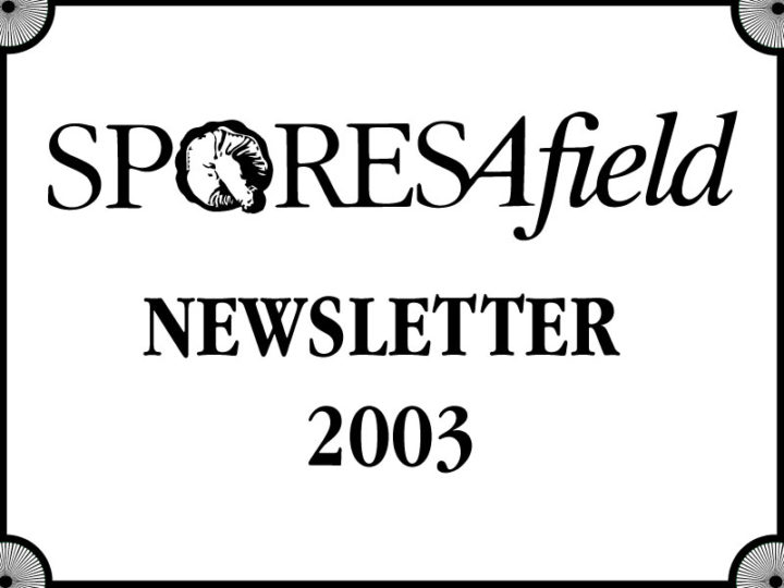 SporesAfield Newsletter |  July 2003