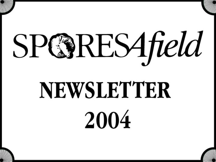 SporesAfield Newsletter | March 2004